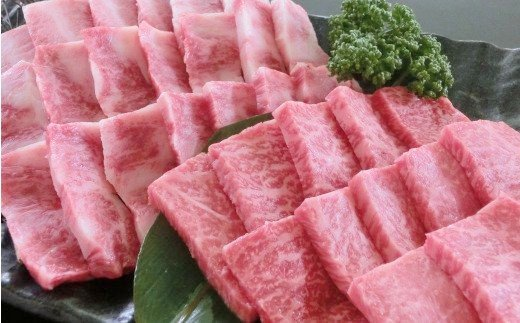 [A001-203011]くまもとあか牛焼肉2種セット500g