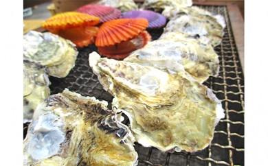 [№5772-0180]殻付きマガキ約 1kg(10~15枚程度)、ひおうぎ貝10枚(いづれも加熱調理用)