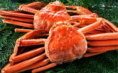 [№5941-0308]ボイルズワイ蟹姿1.2kg 2尾セット