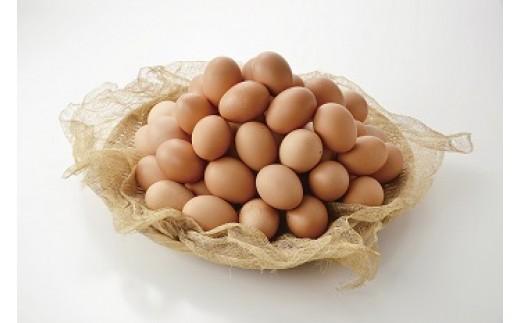 30E-161 〈大容量〉秋川牧園の卵60玉セット