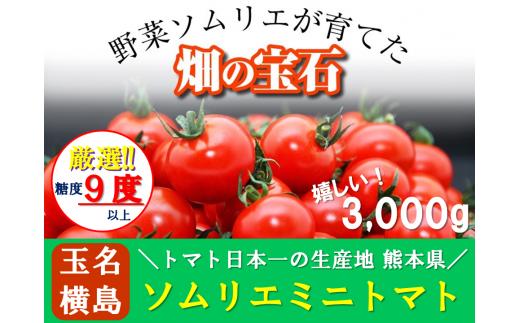G1 熊本県玉名産ソムリエトマト(ミニトマト3kg)