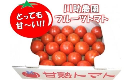 【2021年発送】とっても甘~い!川助農園のフルーツトマト1.5kg以上(最大糖度15.3度!!)