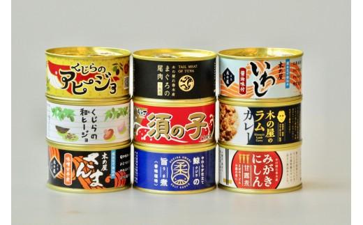 B-10 木の屋特選缶詰9缶セット
