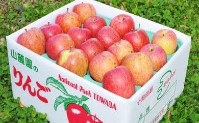 [№5764-0389]【ご家庭用】鹿角りんご「サンふじ」2段詰め約10kg