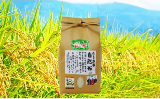 たごもり農園の自然米