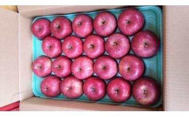 有機肥料・低農薬栽培のりんご(ふじ)の家庭用 5kg箱