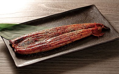 「艶黒」くすだ屋の鰻(鹿児島大崎産)中サイズ6尾