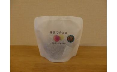 【10月中旬~発送】林檎でチョコ8袋入り