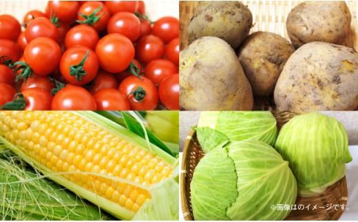 BD01 地元産野菜・果物の詰め合わせセット-2