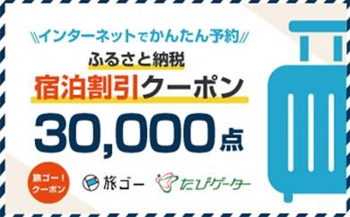 [№5815-0178]安中市 旅ゴー!クーポン(30,000点)