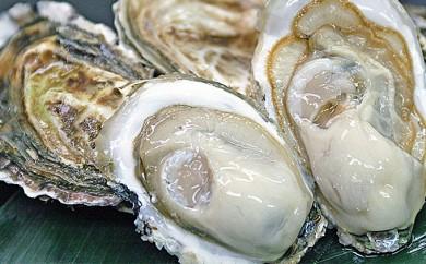[№5863-0224]厚岸産牡蠣「カキえもん」Lサイズ15個入
