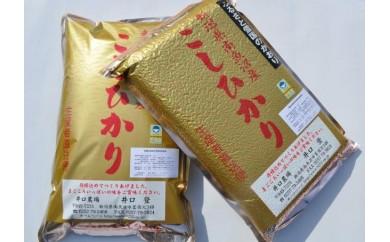 【頒布会】南魚沼産コシヒカリ「雪国のかおり」特別栽培米10kg毎月頒布(1年間 全12回)