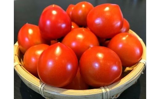 神栖市産 フルーツトマト(200g)10袋