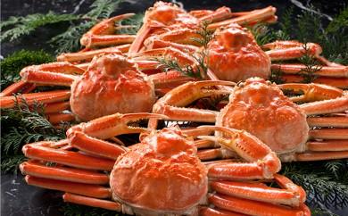 [№5941-0312]こだわりのボイルズワイ蟹姿3kg×5尾セット