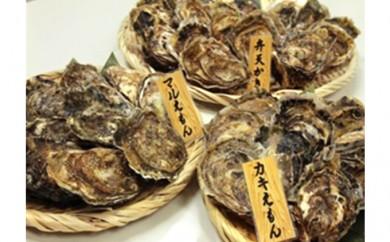 [№5863-0133]厚岸産『マルえもん』『カキえもん』『弁天かき』3種食べ比べセット