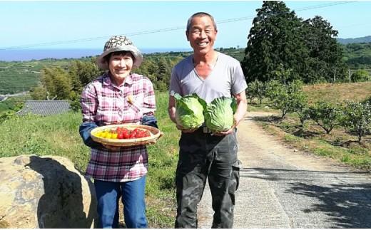 BD01 地元産野菜・果物の詰め合わせセット-8