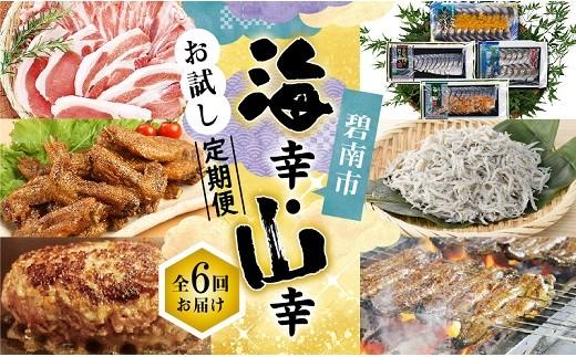 海幸・山幸お試し定期便(全6回お届け) H028-008