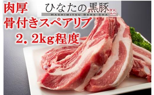 【自家生産】ひなたの黒豚骨付きスペアリブ<2.2kg程度:はしみつバーク舎> SHB05