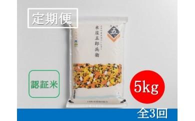 【定期便/全3回】十日町産魚沼コシヒカリ 米屋五郎兵衛 特別栽培米 精米5kg