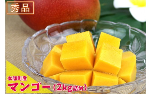 【2019年夏発送】本部町産マンゴー(秀品)(2kg詰め)