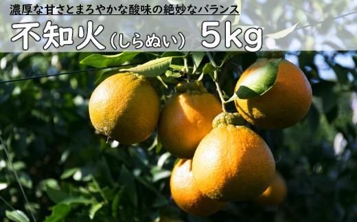 RK-15不知火【5kg】※訳あり商品