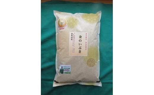 【令和元年産米】B2103 特別栽培米 金のいぶき5㎏