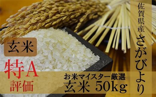 H-4 【30年産新米】【特A】厳選!佐賀県産さがびより 玄米50kg