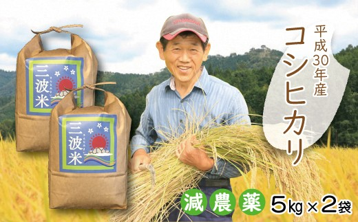 C-50 H30新米【減農薬】三波農地を守る会のコシヒカリ10㎏