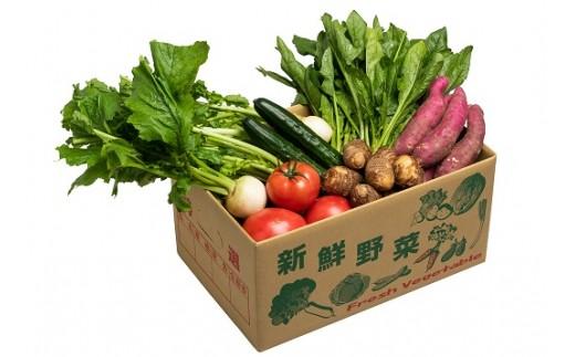 005-021 産地直送!伊豆の国産まごころ季節の野菜セット