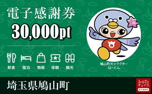 [№5721-0090]鳩山町  電子感謝券30,000pt