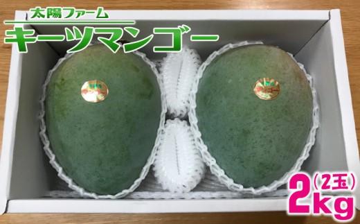 【2019年発送】糸満農家直送!太陽ファームのキーツマンゴー2kg
