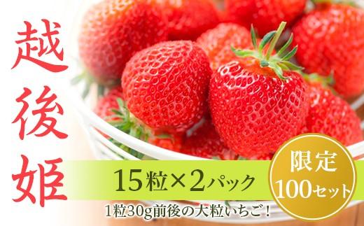 0260いちご越後姫(15粒×2パック)新潟県産