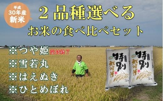 170 小野寺農園の【2品種】選んで食べ比べセット
