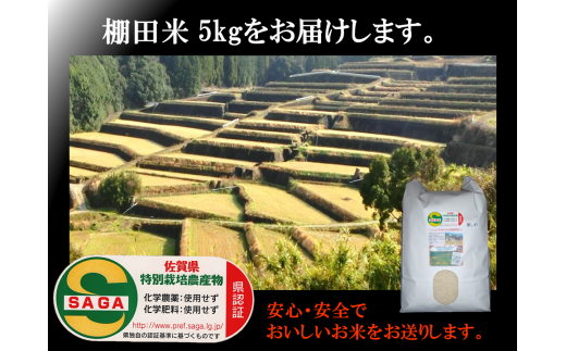 b-58 しょうちゃんの棚田米 夢しずく農薬・化学肥料不使用5kg 精米