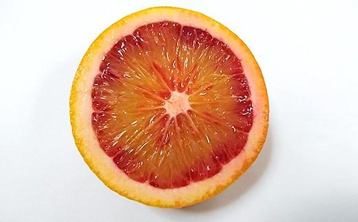 衝撃の赤い果肉!生のブラッドオレンジは貴重です