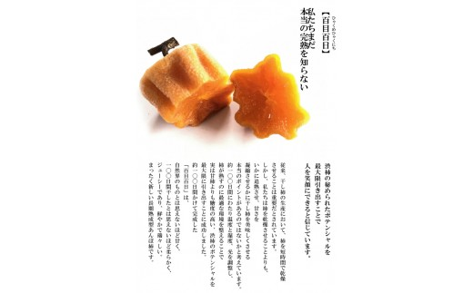 B-121.【糖度約50%】長期熟成型干柿「百目百日」5個入り