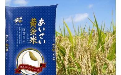 あいさい黄金米(胚芽白米 計6kg) 【10-3】