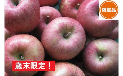 [№5731-0242]歳末限定!家庭用サンふじ約10kg  津軽平川市産