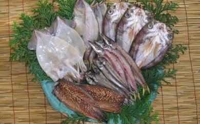 【受付一時停止】【富来漁港で水揚げされた地魚を加工】能登の地魚一夜干し