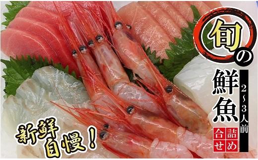 010107. 【刺身に調理済】日本海で獲れた旬の鮮魚詰め合わせ