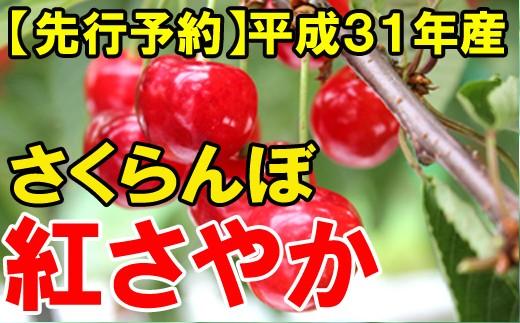 【先行予約】平成31年産さくらんぼ(紅さやか)1kg