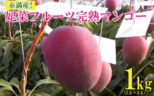 【2019年発送】糸満産!妃菜フルーツ完熟マンゴー1kg(2玉~3玉)