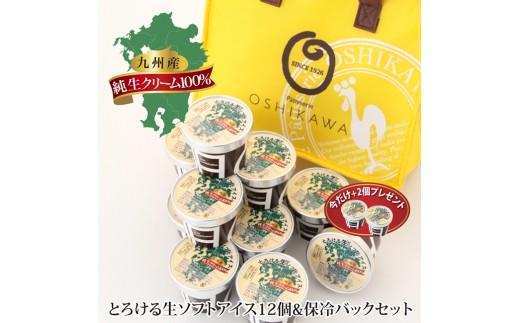 i2701P『押川春月堂本店』とろける生ソフトアイスクリーム12個
