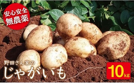BBS001 【申込みは1/20まで!】 完全無農薬!野田さん家のじゃがいも(ニシユタカ) 10kg