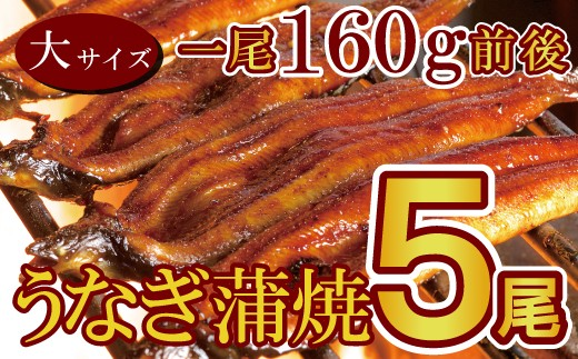 D-261 上峰うなぎ「柳屋」厳選 特上うなぎ蒲焼大サイズ 5本