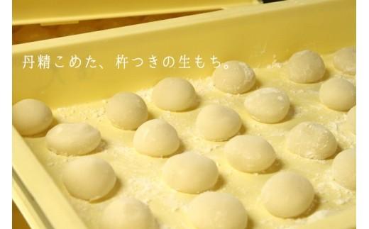 07-28 本格杵つき生もち(10個入6パック)