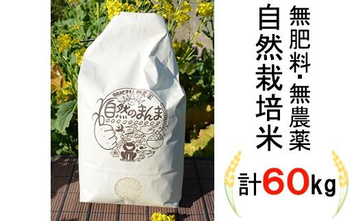 【150-003】栽培期間中肥料・農薬不使用米!「自然のまんま」5kg×12回