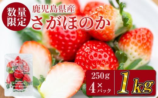 A-112 鹿児島県産!さがほのか