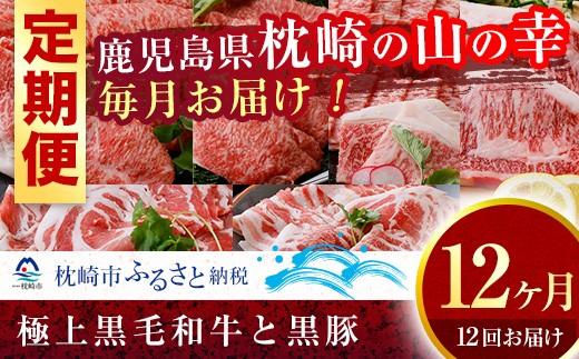 JJ-0002 定期便(12ケ月)極上鹿児島県産黒毛和牛&黒豚