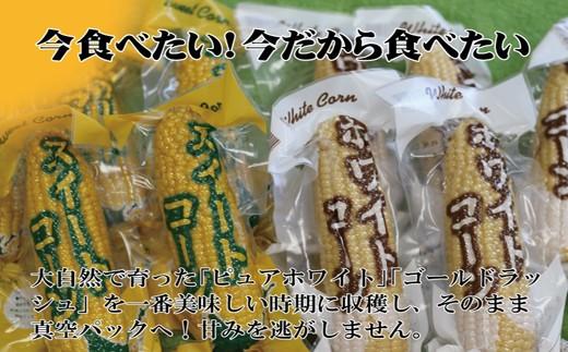 【10-43】レトルトスイートコーン「白と金」 北海道のとうもろこし食べ比べセット